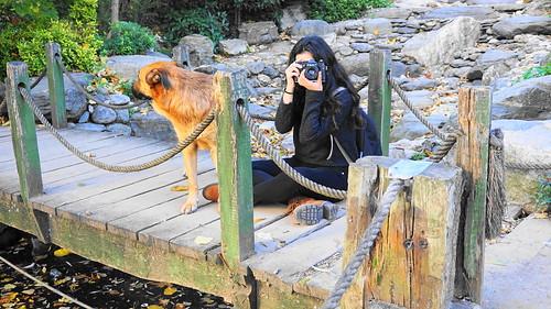 An amateur photographer at Atatürk arboretum. İstanbul,Turkey 🇹🇷