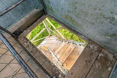 Firetower Stairs - St. Croix State Park, Minnesota (Tony Webster) Tags: minnesota saintcroixstatepark stcroixstatepark firetower observationtower spring stairs statepark steps trees crosbytownship unitedstatesofamerica