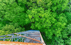 Looking Down - Saint Croix State Park CCC Fire Tower (Tony Webster) Tags: minnesota saintcroixstatepark stcroixstatepark firetower observationtower spring statepark trees crosbytownship unitedstatesofamerica
