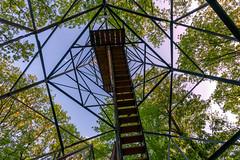 Looking Up - St. Croix State Park Fire Tower (Tony Webster) Tags: minnesota saintcroixstatepark stcroixstatepark firetower lookingup observationtower spring statepark trees crosbytownship unitedstatesofamerica