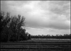 Dark Day (greenschist) Tags: trees film mediumformat washington missouri analog missouririver 6x45 trail zenzanonrf65mmf4 bronicarf645 railroadtracks berggerpancro400 franklincounty clouds