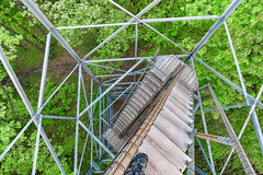 St. Croix State Park Fire Tower Steps - Looking Down (Tony Webster) Tags: minnesota saintcroixstatepark stcroixstatepark firetower lookingdown observationtower spring statepark trees crosbytownship unitedstatesofamerica