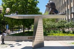 Toronto 2019 (45 of 68) (Xander Ashburn) Tags: cityhall toronto ontario canada