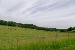 Landscape — Monroe Township, Richland County, Ohio (Pythaglio) Tags: trees ohio field grass clouds unitedstatesofamerica scenic farmland lucas hills pasture rolling pleasant topography monroetownship richlandcounty