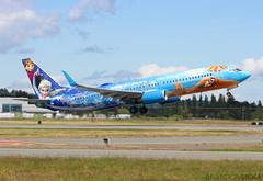 C-GWSV WestJet Boeing 737-8CT@YYJ 08Jun19 (Spotter Brandon) Tags: cgwsv westjet boeing 737 7378ct 737800 elsa olaf frozen disney yyj cyyj victoria takeoff speciallivery