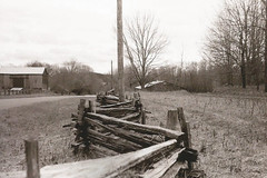 Country fence! (rbelfryphoto) Tags: ilford hp5 yashicaministerd blackwhite film analogphotography