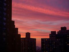 copper clouds (m_laRs_k) Tags: nyc nj newjersey olympus omd usa manhattan sk skyscape cloudscape night architecture copper sunset 纽约 abendzauber 1240 ньюйо́рк