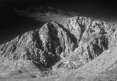 20190226-IMG_6397-Edit.jpg (LauriNovakPhotography) Tags: redrockcanyon lasvegas blackvelvetcanyon ig9redrock