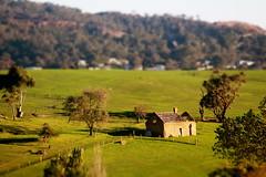 Lysterfield Valley (Tidalist) Tags: tiltshift tiltshiftminiature lysterfieldvalley dandenongranges melbourne farmhouse ruin valley tree rural countryside australia