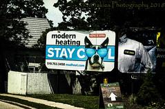 Stay Cool  (HSS) (13skies) Tags: happyslidersunday effect layermask photoshop photoshopelements15 staycool billboard parison software slider postwork postprocessing bambootablet digitalart