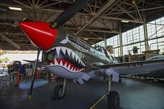 P40 (milfodd) Tags: may 2019 p40 curtissp40warhawk americanairpowermuseum