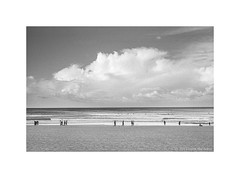 Manly beach, Sydney 2019  #970 (lynnb's snaps) Tags: 35mm cvultron35mmf2vintagemmo id11 ilfordhp5 leicacl manly bw blackandwhite film cvultron35mmf2vintagemmount 2019 sydney australia coast ocean leicafilmphotography rangefinderphotography bianconegro biancoenero blackwhite bianconero blancoynegro noiretblanc schwarzweis monochrome ishootfilm filmneverdie cloud clouds landscape beach people sand