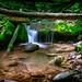 Upper, Upper Dark Hollow Falls