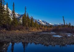 Jasper scene 11 (Robert Grove 2) Tags: jasper canada landscape nature