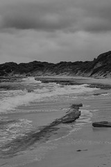 Beach (Stueyman) Tags: sony alpha a6000 wa westernaustralia rockingham perth au australia beach sky sea indianocean ocean water bw blackandwhite noiretblanc 85mm