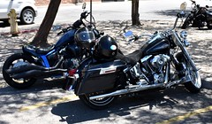 Parking lot (thomasgorman1) Tags: bike motorcycle harley street ca california streetphotos nikon motorcycles streetshots travel engine