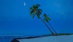 Big Island Breeze (LOURENḉO Photography) Tags: big island hawaii night sky moon fourseasons four season bigisland resort art color sand beach palm tree ocean breeze