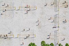 Beach Volleyball Facility (Aerial Photography) Tags: by m obb 08062004 bavaria bayern beachvolleyball beachvolleyballpltz beige conollystrase deutschland farbe fotoklausleidorfwwwleidorfde fotoklausleidorfwwwleidorfaerialcom freizeit freizeitsport gelb germany grün linien luftaufnahme luftbild menschen milbertshofen munich münchen p2 rechteck s2p41081 schatten siedlung sport sportplatz sportzentrumdertechnischenuniversität volleyball aerial athleticsfield color colour green leisure leisuresports lines outdoor people rectangle settlement shade shades shadow shadows sportingground sports sportsarea verde yellow deutschlandgermany