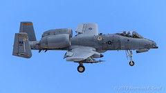 Fairchild Republic A-10C Thunderbolt II of the 66th Weapons Squadron from Nellis AFB (Norman Graf) Tags: ordnance a10 a10c 800185 66wps airplane aircombatmaneuverinstrument fairchildrepublic p5ctstcts usaf aircraft nellisafb 66thweaponssquadron acmi cas closeairsupport combattrainingsystem jet plane tacticalcombattrainingsystem thunderboltii unitedstatesairforce wa warthog