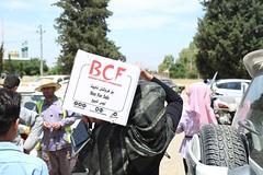 BCF - Halabja