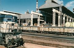 Mt Isa (andrewsurgenor) Tags: train railroad railway rail railfan railways queenslandrailways clyde emd diesel locomotive mtisa queensland australia