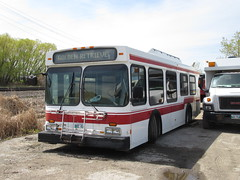 ex-Golden Retriever (TheTransitCamera) Tags: newflyerindustries d30lf goldenretriever senior shuttle bus