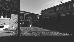 (VirtualWolf) Tags: australia bw building canonef815mmf4lfisheyeusm canoneos5dmarkiv grass landscape modern newsouthwales ourhouse sydney