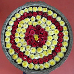 tamil nadu flower moon (2) (kexi) Tags: tamilnadu india asia square circle flowers many yellow red composition arrangement samsung wb690 february 2017 marigolds roses enmasse instantfave mandala wow