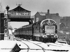 RJSS BW 0658 BR Deltic No D9000 Selby Swing Bridge 2nd January 1997 (robinstewart.smith) Tags: br deltic d9000 selby swing bridge 1991