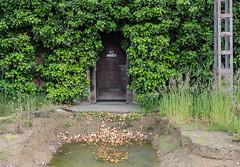 Wet entrance (jefvandenhoute) Tags: belgium belgië antwerp antwerpen petrolzuid