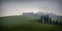 Toscane 2019-459 (Oliver 6455) Tags: italie toscane