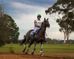 (Laszlo Papinot) Tags: horserace racinghorse man werribeepark people werribee horserider crosscountry horse rider werribeeparknationalequestriancentre