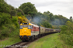 97205 Bridge 12, Bewdley (Erlestoke7812) Tags: diesel locomotive train railway heritagetraction preservation vintage severnvalley severnvalleyrailway dieselgala spring dieselfestival may 2019 uk ukrailscene ukrailways chinnorandprincessrisboroughrailway class31 railresearch chinnor canon 700d bewdley mk1
