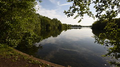 Dinton Pastures Reflections - 4 (rq uk) Tags: rquk nikon d750 dintonpastures reflection tree blue sky lake nikond750 afsnikkor1835mmf3545ged