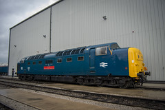 All Change (DM47744) Tags: all change train trains diesel engine traction transport travel locomotive loco rail railway preserved preservation track railways railroad locomotives crewe open day services limited ltd type 4 d3100 nikon rails cheshire deltic 55019 d9019 transportation br blue society