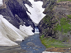 A river is born.... (Lopamudra !) Tags: lopamudra lopamudrabarman lopa landscape india kashmir kasmir zojoila jojila jozila pass snout glacier glacial stream river snow snowscape himalaya himalayas highaltitude highland mountain mountains water waterscape beauty beautiful jk