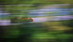 Whiplash (Dan Haug) Tags: ferrari 488 challenge montreal carracing circuitgillesvilleneuve panning canadiangrandprix weekend quebec canada whiplash xt3 xf50140mmf28rlmoiswr fujifilm fujixseries mirrorless