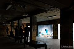 20190609-16-Dark MOFO  compo$t exhibition in old blood bank building (Roger T Wong) Tags: 2019 australia darkmofo hobart rogertwong sel28f20 sony28 sonya7iii sonyalpha7iii sonyfe28mmf2 sonyilce7m3 tasmania art bloodbankbuilding installation night