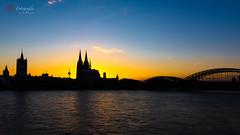 Skyline of Cologne | 20190515-_MB85312-Bearbeitet-Matthias Bauernschmidt Fotografie.jpg (MIAS#Fotografie) Tags: köln kirche römischkatholischekirche silhouette romanischekirche rathaus sonnenuntergang hohedomkirchesanktpetrus hohenzollernbrücke 169 rhein skyline kölnerdom grosstmartin sundowner sunset chirch cologne townhall city