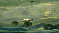 Endless hills (Tom Ek) Tags: outdoors italy tuscany pienza hills spring green landscape shadows