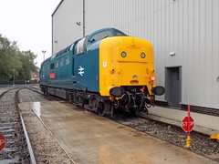 55019 On Shed (Jason_Hood) Tags: 55019royalhighlandfusilier 55019 deltic class55