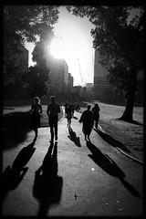 untitled (Albion Harrison-Naish) Tags: sydney streetphotography australia nsw newsouthwales iphone thedomain hipstamatic blackeyssupergrainfilm lowylens albionharrisonnaish iphonese