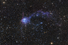 NGC 602 - Koi Nebula (Terry Robison) Tags: ngc602 nebula smc longexposure astrophotography koi koinebula
