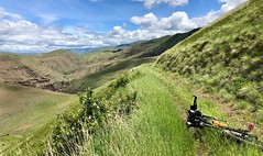 IMG_2305 (Doug Goodenough) Tags: bicycle bike cycle pedals spokes ebike trek powerfly 97 hells canyon snake river grande ronde oregon 2019 19 june spring drg531 drg53119 drg53119p drg53119plpoint dirt showers vista views sun clouds