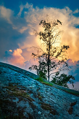Rising Storm at Yesterday Evening (Mikael Neiberg) Tags: clouds storm tree rock landscape sky evening naturesbeauty colorful colors nikond700 tamronsp70300mmf456divcusd