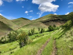 IMG_2296 (Doug Goodenough) Tags: bicycle bike cycle pedals spokes ebike trek powerfly 97 hells canyon snake river grande ronde oregon 2019 19 june spring drg531 drg53119 drg53119p drg53119plpoint dirt showers vista views sun clouds