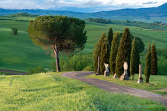 Early Morning photos of Val d'Orcia (sharon.verkuilen) Tags: italy tuscany valdorcia sanquirico sonya7rii