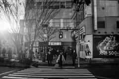 picture 0072 (Logicpierrot_) Tags: filmphotography landscape streetphotography cityscape blackandwhite snapshot monochrome noiretblanc 35mm urban streetmobs tokyo dusk sunset portrait streetportrait