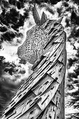 Kelpis I (Enrique Mesa) Tags: kelpis scotland blackandwhite escocia blancoynegro bw byn falkirk sculpture escultura horse