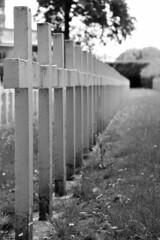 Enclos National des Fusillés (Liège 2019) (LiveFromLiege) Tags: liège luik wallonie belgique architecture liege lüttich liegi lieja belgium europe city visitezliège visitliege urban belgien belgie belgio リエージュ льеж enclos national des fusillés citadelle de résistance verzet wwi 2gm ww2 black white bnw bw blackandwhite blackwhite whiteandblack whiteblack noir et blanc noiretblanc noirblanc blancnoir wb nb noietblanc bllackwhite blackandwhitephotography